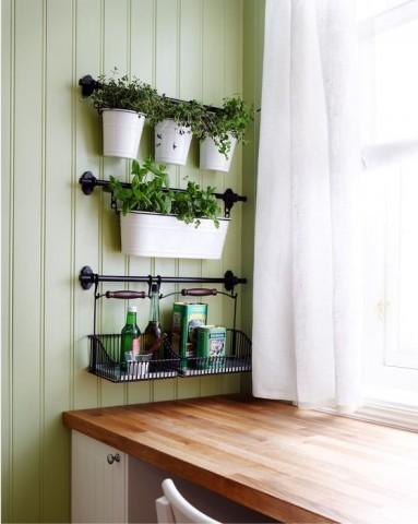 Огород на кухне: примеры, которые обязательно надо увидеть 1