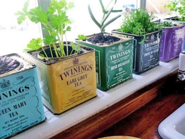 Огород на кухне: примеры, которые обязательно надо увидеть 0