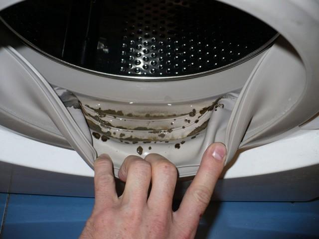 Чистка стиральной машины от плесени 0