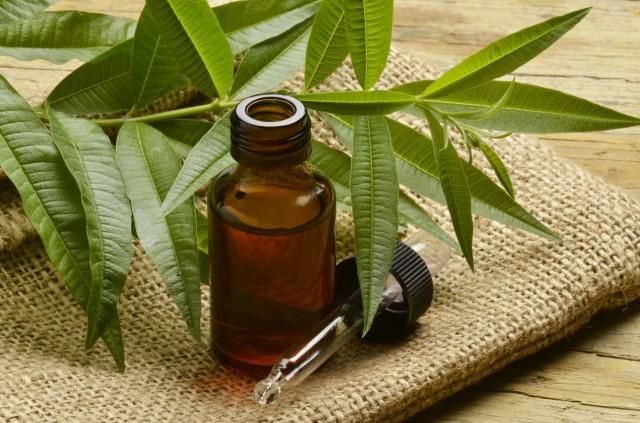 15 способов использовать масло чайного дерева в быту 0