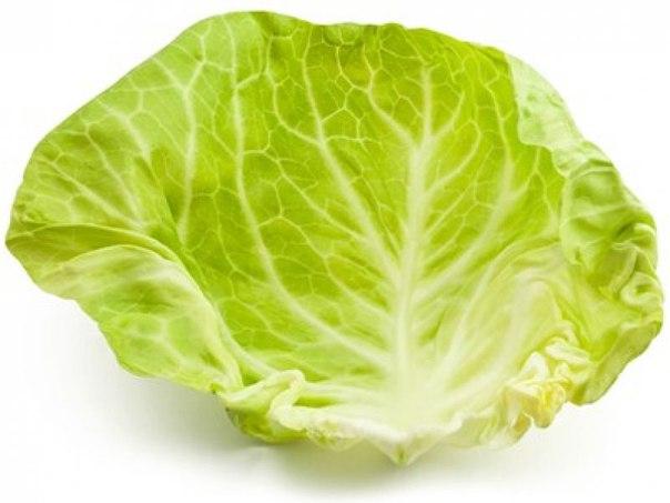 От кашля - лист капусты на грудь 0