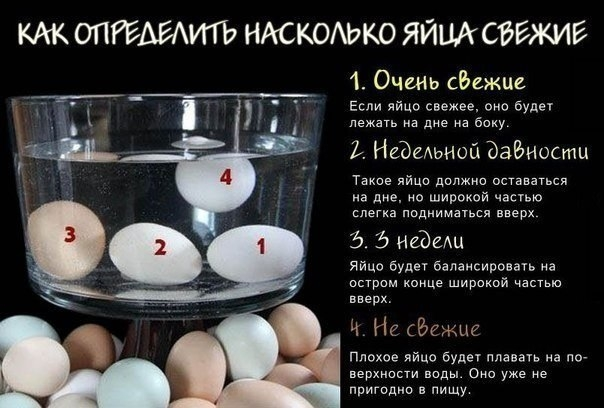 Как определить насколько яйца свежие