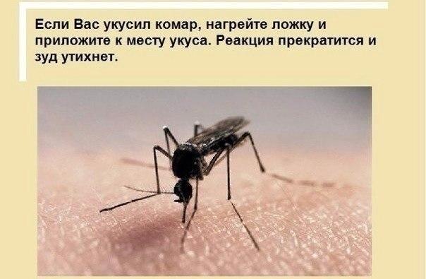 http://www.polsov.com/upload/live/page-16-4-big.jpg
