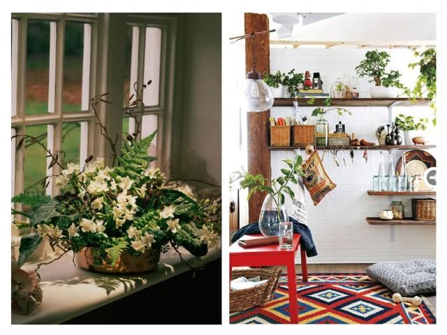 Бохо-стиль: как украсить дом с помощью растений 0
