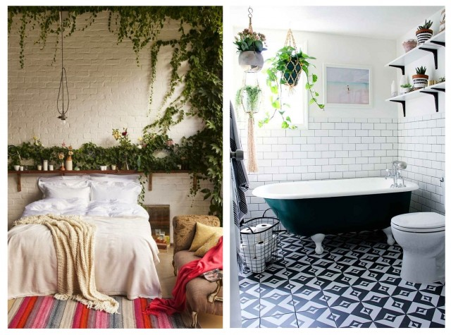 Бохо-стиль: как украсить дом с помощью растений 3