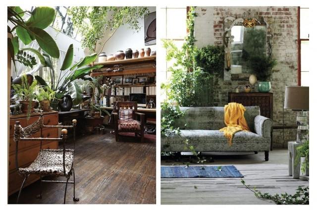 Бохо-стиль: как украсить дом с помощью растений 2