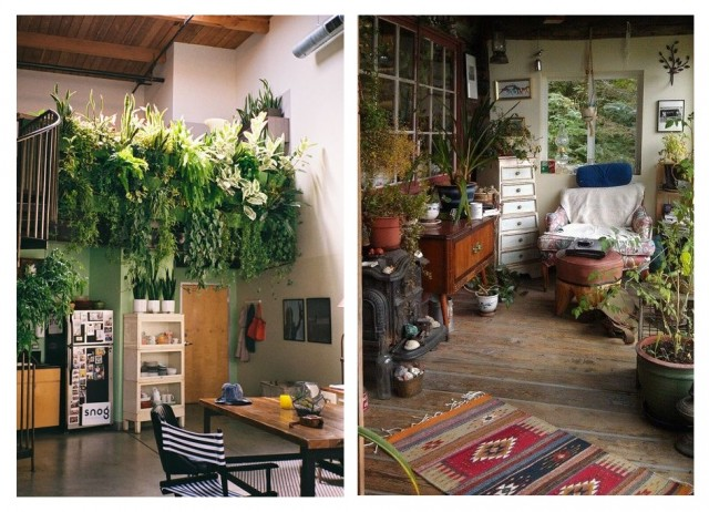 Бохо-стиль: как украсить дом с помощью растений 6