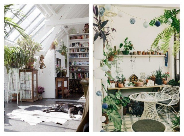 Бохо-стиль: как украсить дом с помощью растений 5