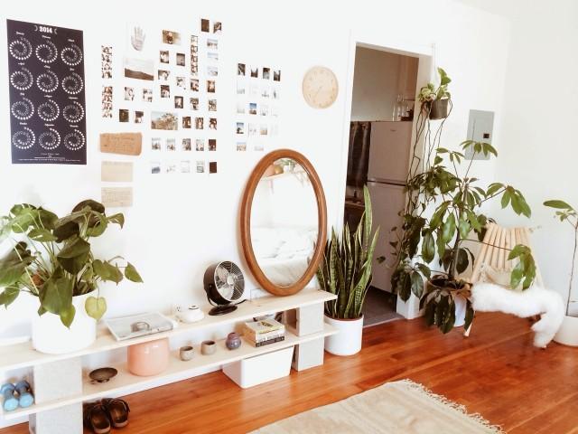 Бохо-стиль: как украсить дом с помощью растений 8