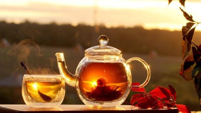 Учимся выбирать чай: от простой классики до экзотических сортов 0