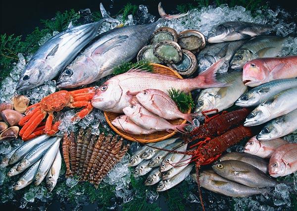 Как выбирать рыбу и морепродукты 0