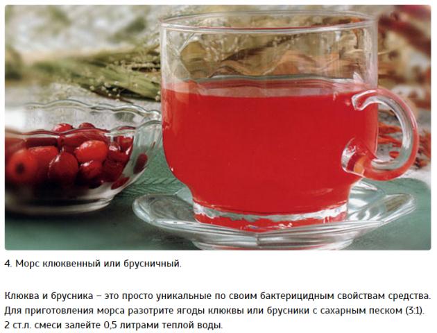 Как сделать чай из шиповника против простуды? 0