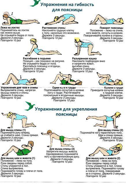 Лучшие упражнения для поясницы 0