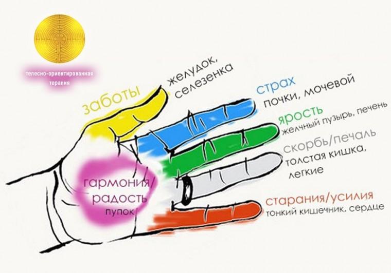 Как делать массаж рук с поразительными результатами 0