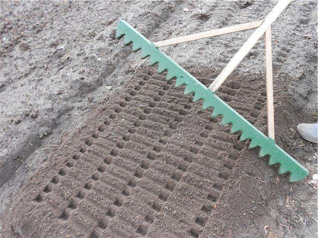 Чем сделать ямки для рассады в земле 5