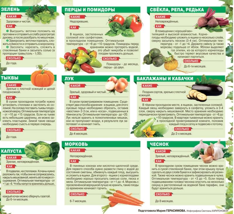 Храним овощи правильно 1