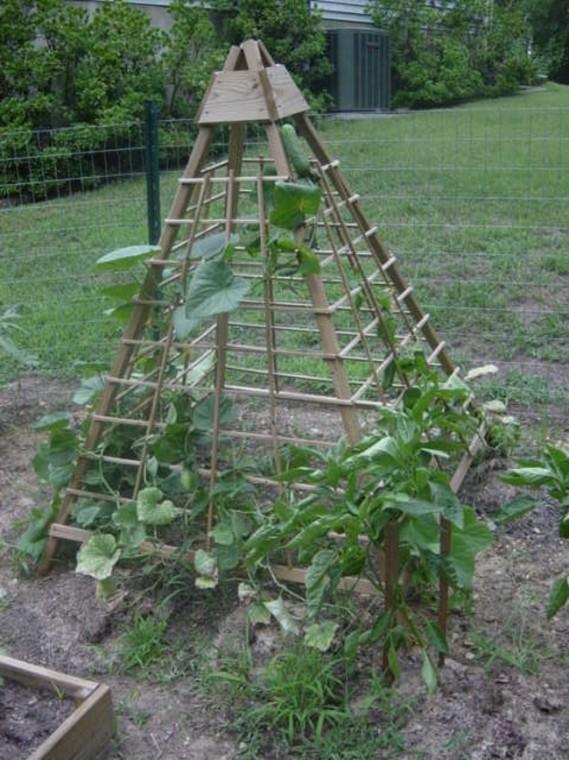 Строим пирамиду для лучшего урожая огурцов 4