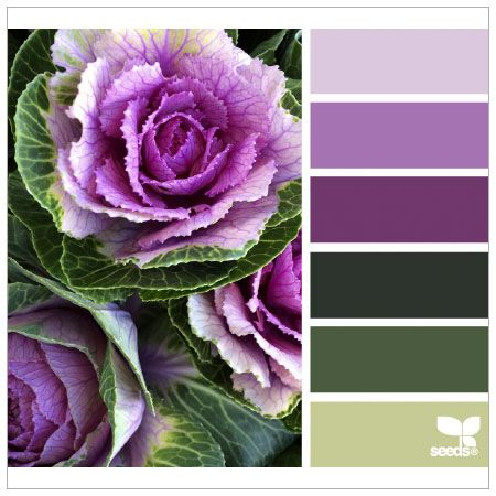 Яркие и сочные сочетания цветов 1