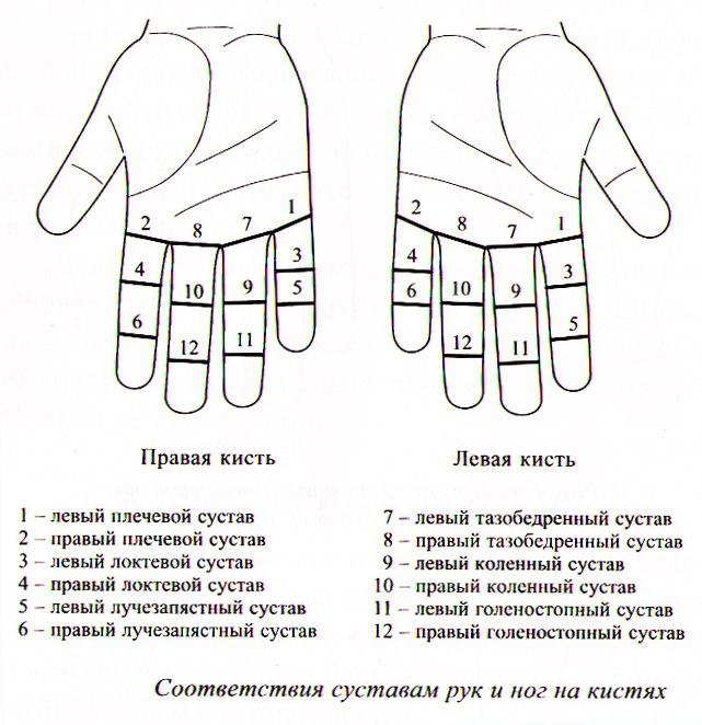 Су-Джок терапия для суставов 0