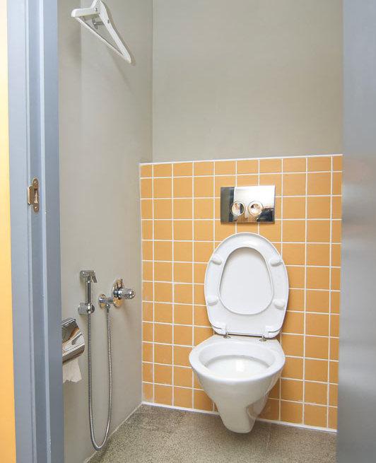 В чем польза и удобство гигиенического душа в туалете 2