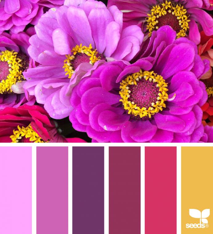 Яркие и сочные сочетания цветов 3