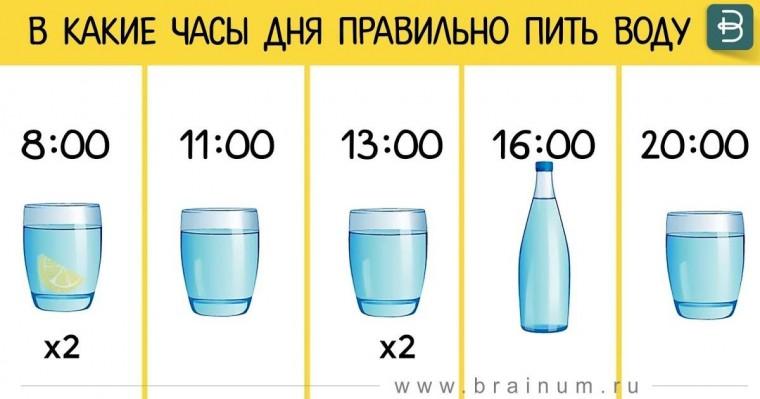 Сколько воды пить в день 2