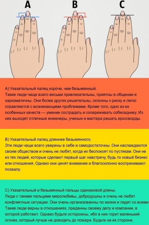 Как определить характер по длине пальцев: исследования ученых Кембриджа 1