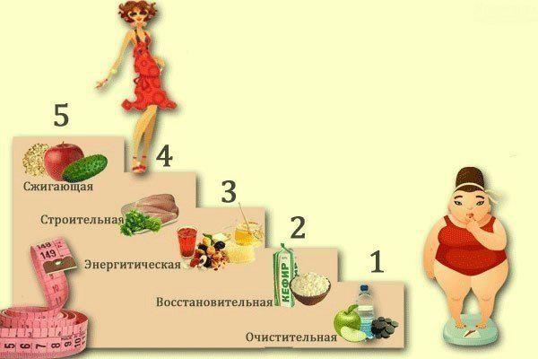 Чудесная диета «Лесенка»: 5 дней — 5 ступеней 0