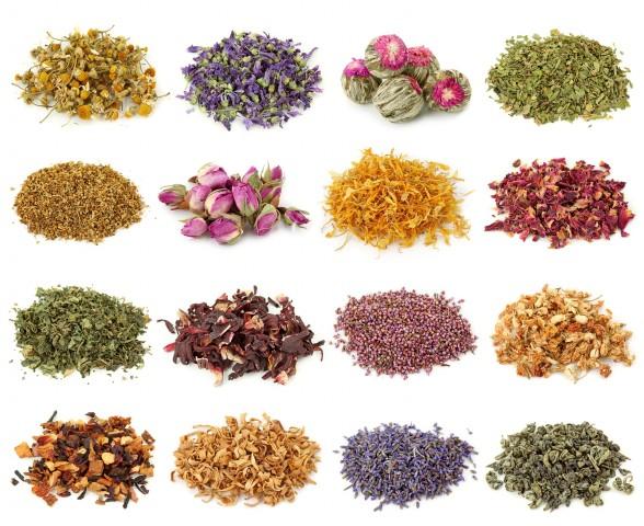 Лучшие травяные чаи для поддержания организма здоровым 0