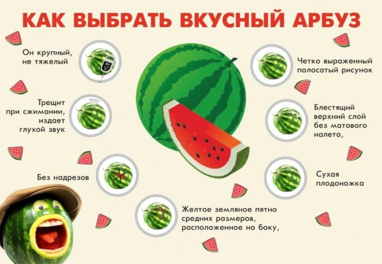Как выбрать хороший арбуз: готовимся к арбузному сезону 1