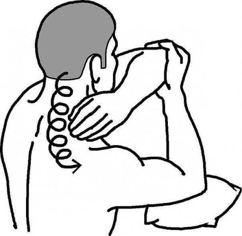 В чем польза самомассажа шейной зоны для профилактики нормального кровотока сосудов мозга 0