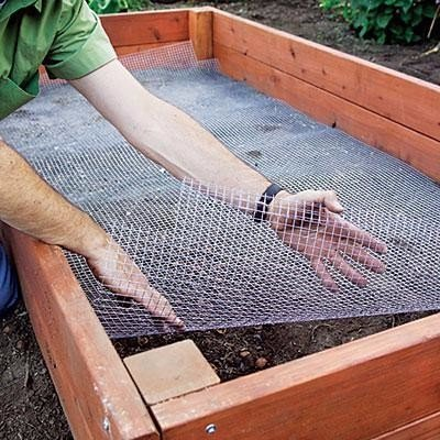 Как сделать короб-парник своими руками с защитой от кротов 3