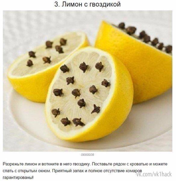Как бороться с комариными укусами как предотвращать их 2