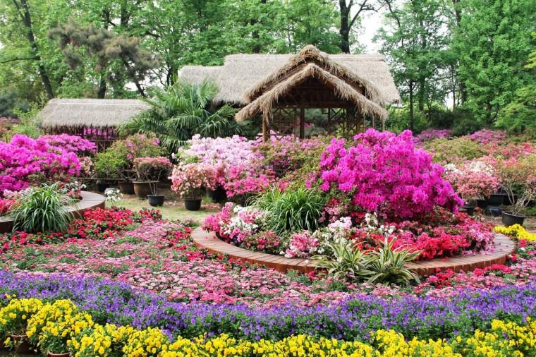 18 полезных советов для сада и огорода 0