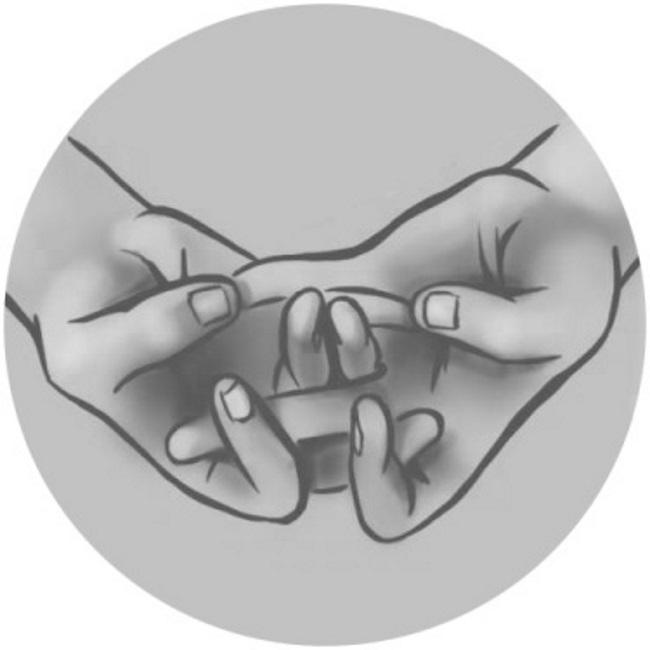 Мудра «Моление о счастье» 0