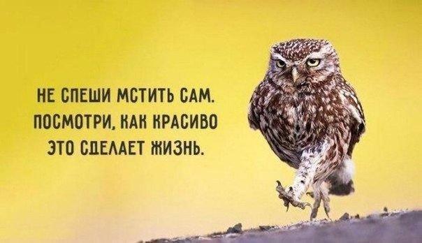 Смешные советы с заложенной в них глубокой мудростью 2