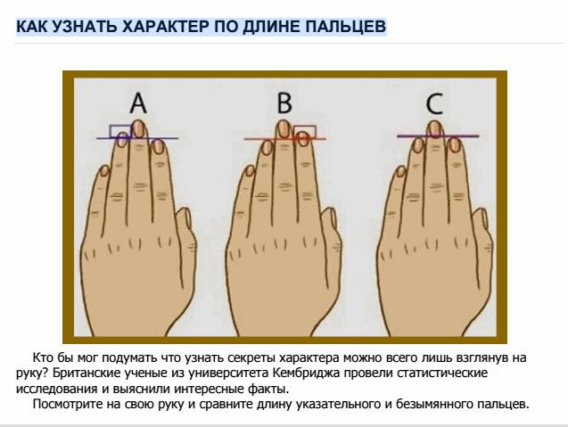 Как определить характер по длине пальцев: исследования ученых Кембриджа 0