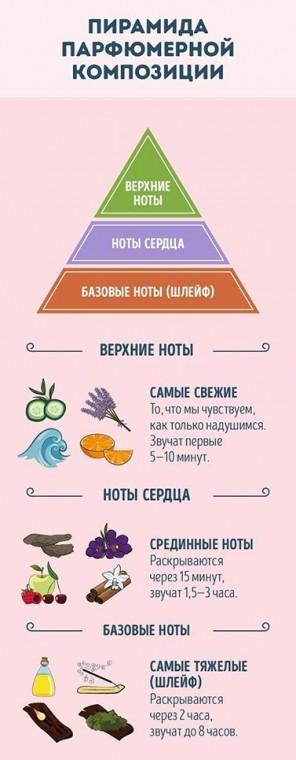 Как разбираться в тонкостях парфюма 3