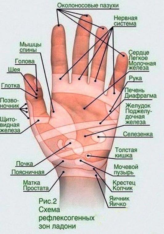 Точечный массаж кистей рук от усталости 0