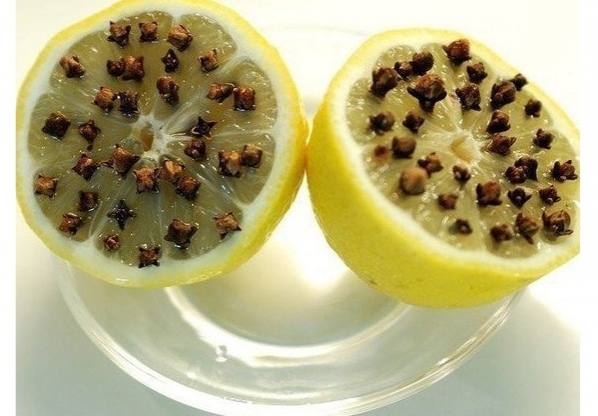Лимон и гвоздика на страже от комаров 0