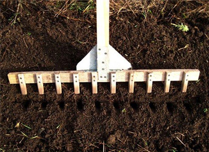 Чем сделать ямки для рассады в земле 4