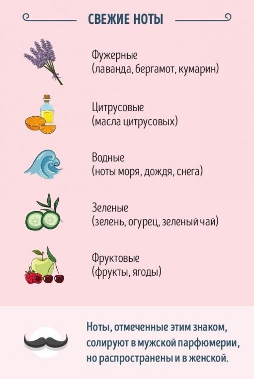 Как разбираться в тонкостях парфюма 1