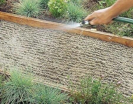 Садовая дорожка из каменных плит 3