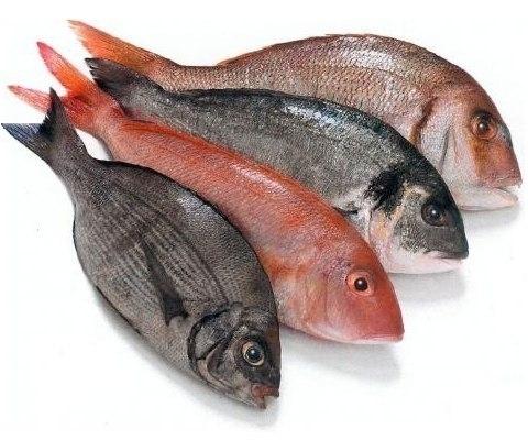 Полезные советы для рыбных блюд 0