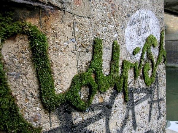 Как сделать надпись мхом на стене. 0