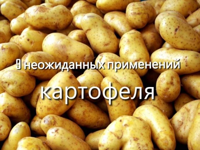 9 невероятных способов полезного применения картошки. 0