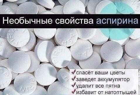 Аспирин - применение в быту. 0