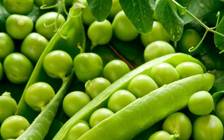 Выбирая консервированный зелёный горошек, смотрите на дату изготовления. 0