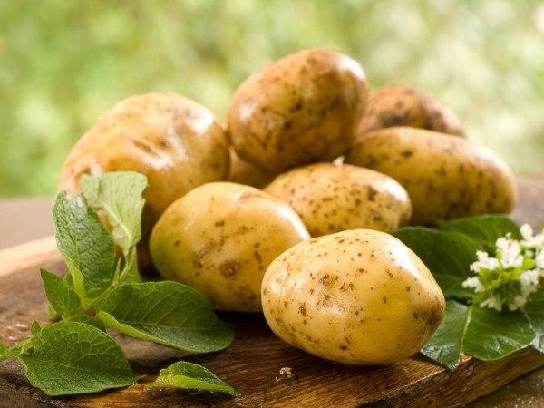 Чтобы хорошо очищалась кожура с молодого картофеля 0